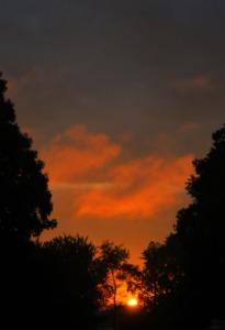 summa sky 3
