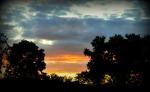 llama sunset