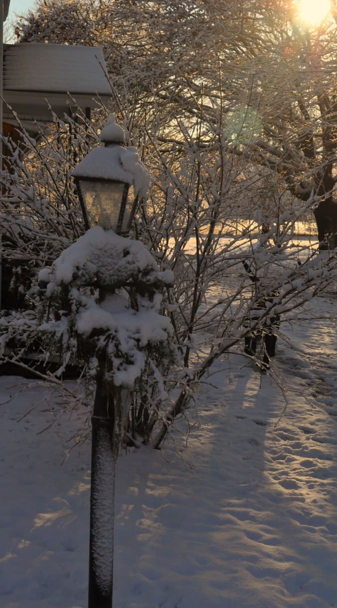 snowy morning in December 13