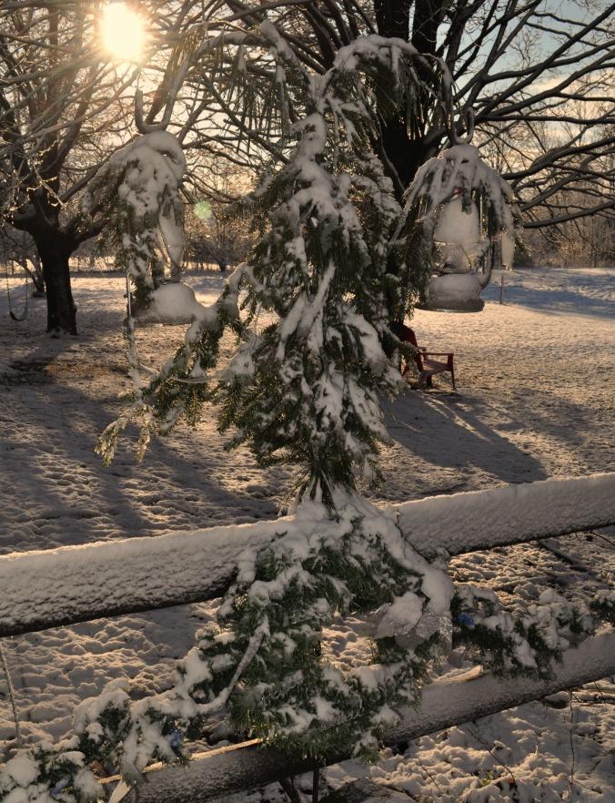 snowy morning in December 14