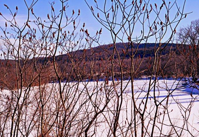 2013 snow 4