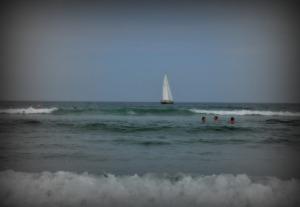 Ogunquit sails