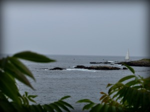 Ogunquit view w boat